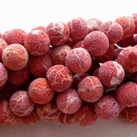 Rød svampe koral