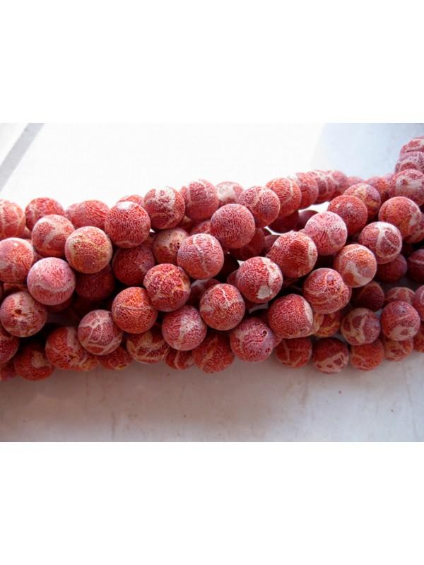 Rød svampekoral, rund 12mm-3