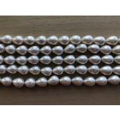 hvide dråbe shell pearls