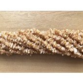 shell chips perler