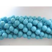 Shell pearl, turkis blå 6mm-20